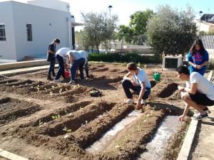 Alumnado trabajando en el huerto del centro. Proyecto llevado a cabo por la profesora Carmen Jiménez.