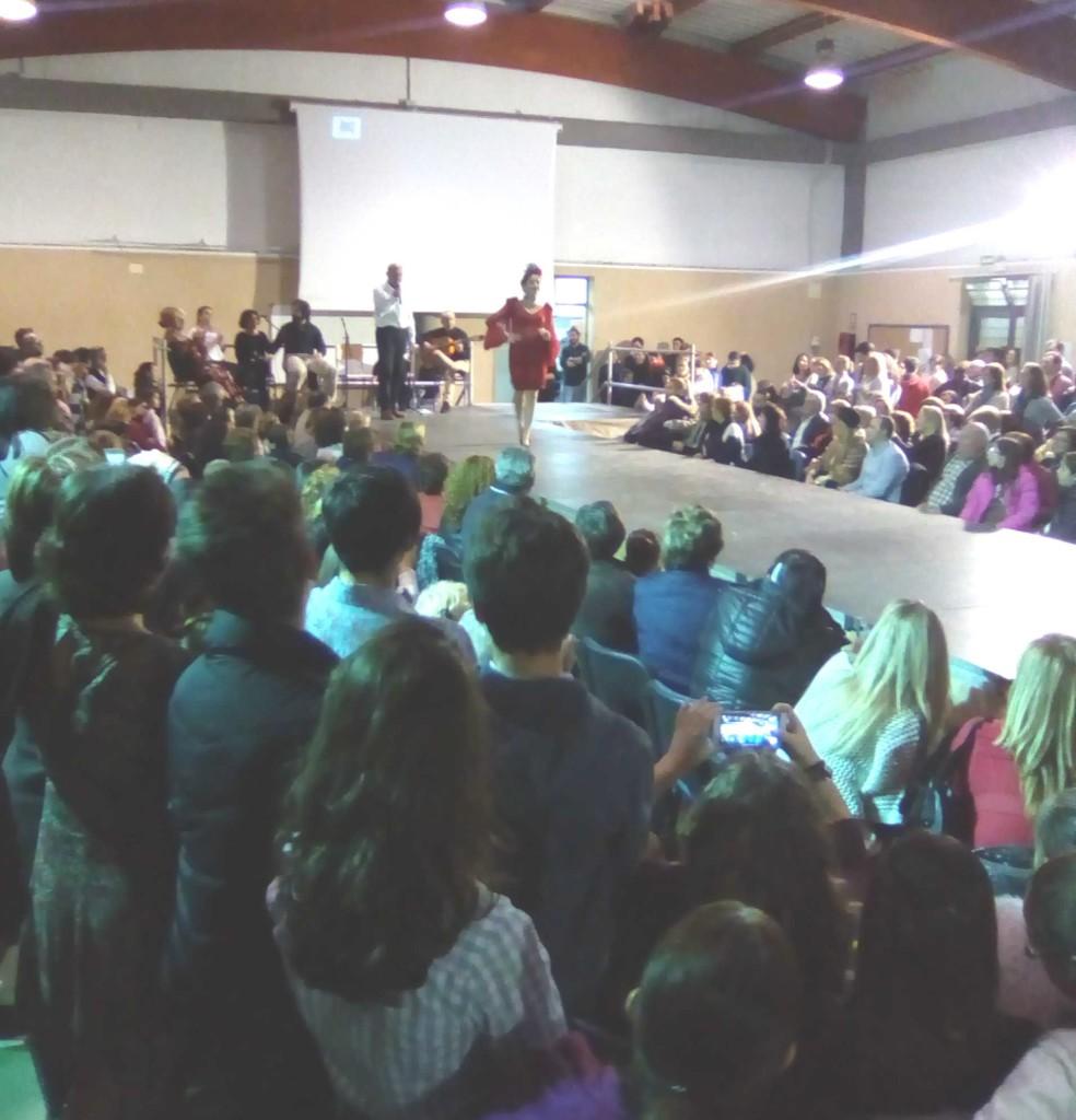 ampa_160123 desfile flamenco_230059